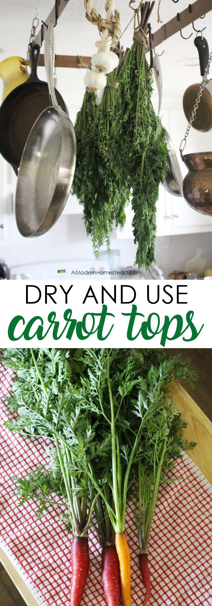 Wondering how to eat carrot tops? Find out how to dry and eat carrot greens! It's easy and nutritious!