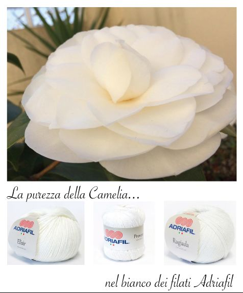 Adriafil white pureness.. :)