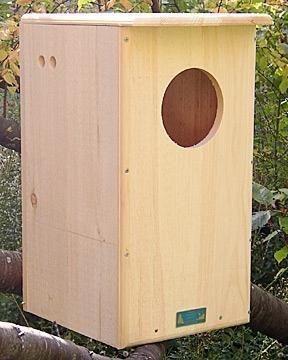 Best 20 Owl House Ideas On Pinterest Box Rustic