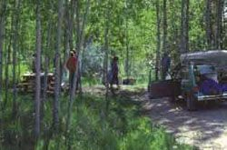 Carney Lake State Forest Campground in Bewabic State Park - fishing, hiking, wildlife, boat launch, 16 sites for tents to large trailers available on a first-come first-serve basis (vault toilets and potable water from well hand pump)