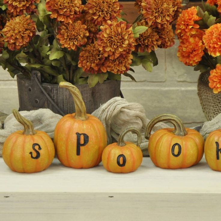 pumpkins are one of the most popular and traditional symbols for halloween and have long been used in halloween decorating add to arrangements of gourds
