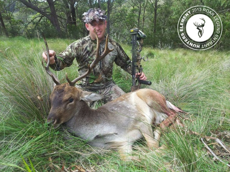 Kris Banks with a Fallow Buck taken from 13m using Bear Mauler 70lbs Bow with rage 2 blade broadheads