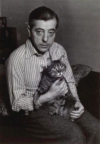 Chats d'écrivainsJacques Prévert et son chat