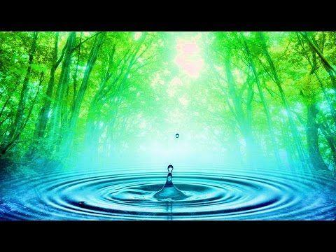 A csakrák étertestünk örvénylő energiaközpontjai, melyek forgó mozgásukkal veszik fel környezetünkből a kozmikus energiákat. ... Finom testünkön több száz il...
