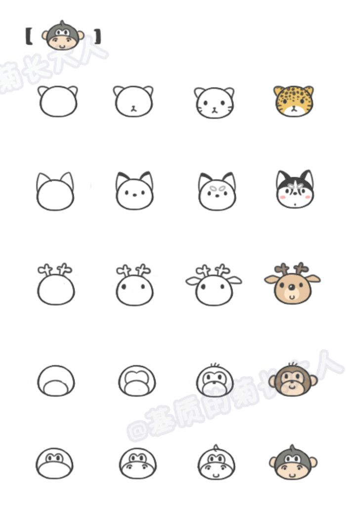 如何让画动物6,来自@基质的菊长大人                                                                                                                                                     More