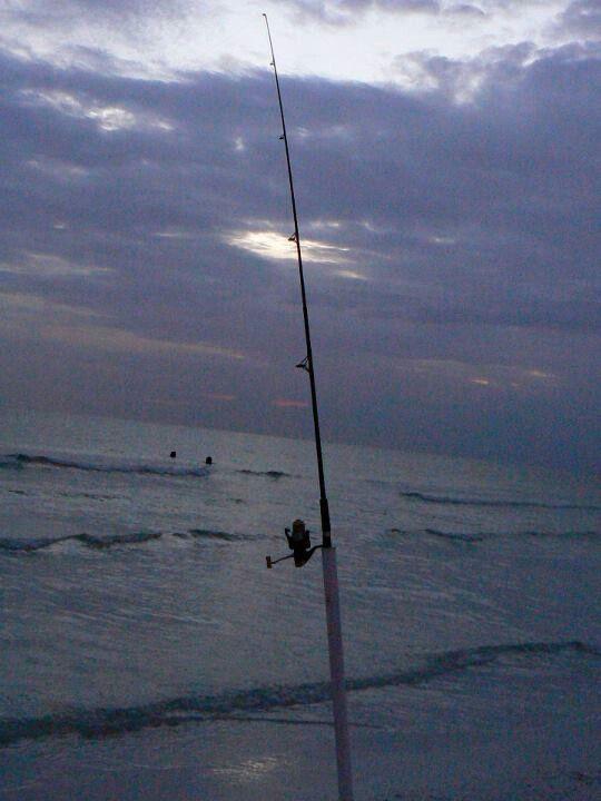 99 best florida fishing images on pinterest fishing for Florida gulf coast fishing charters