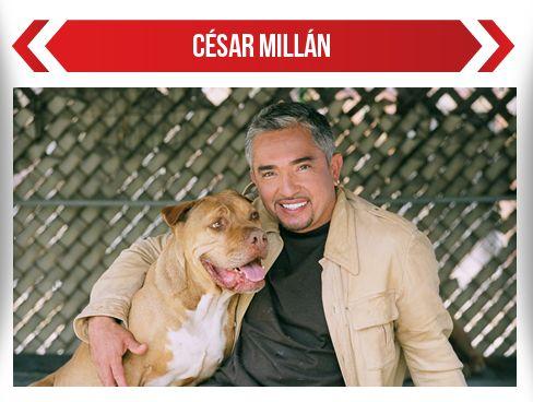 César Millán en Colombia