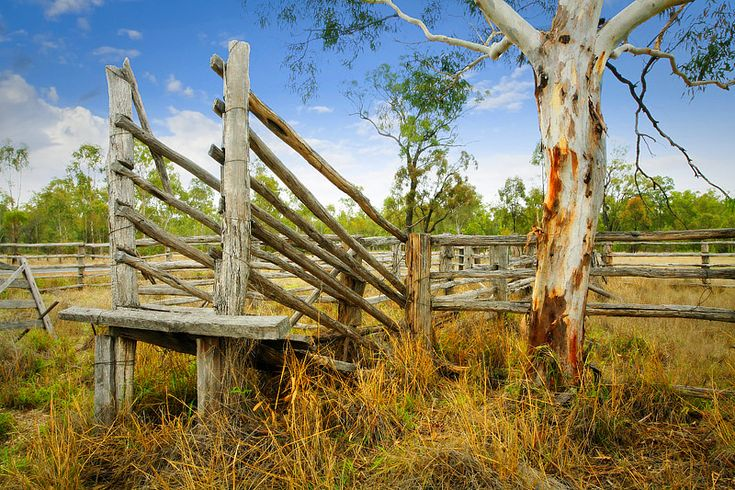 Classic Australian Country Photography: Dan Proud Photography