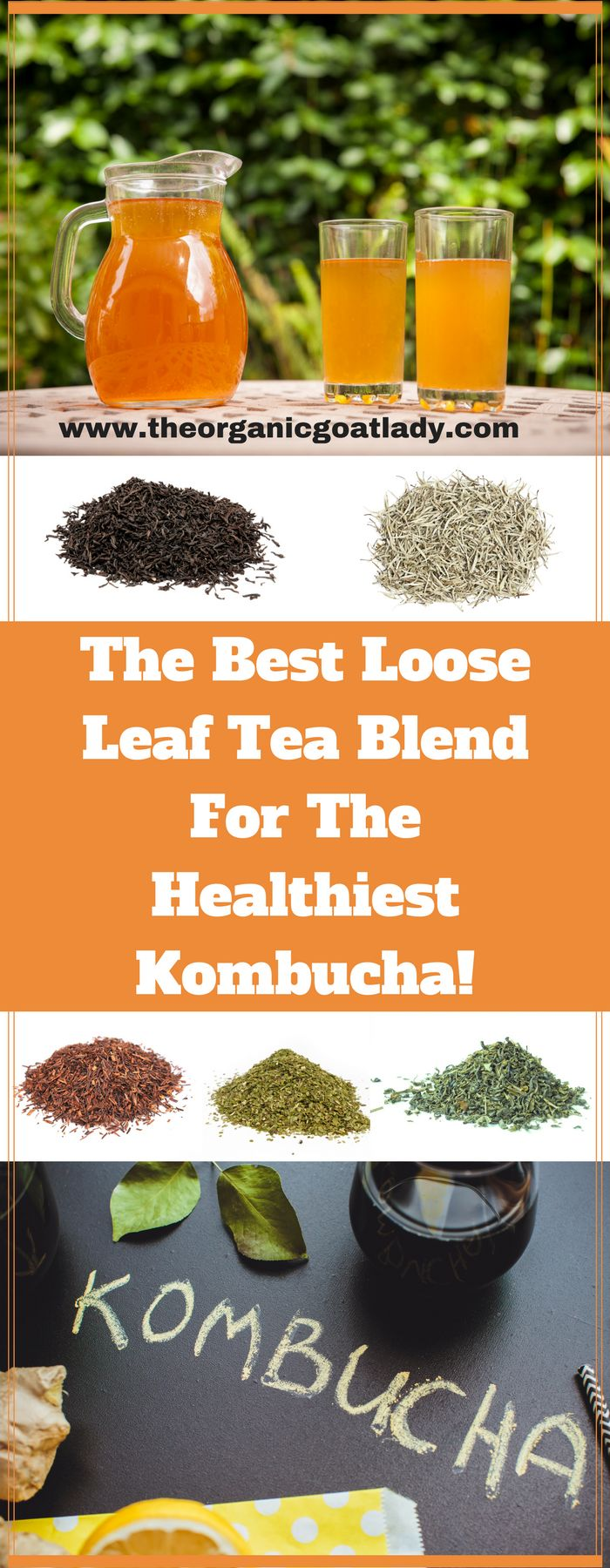 The Best Tea Blend For The Healthiest Kombucha!