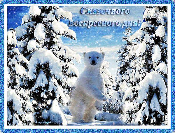 Прикол, с воскресным утром картинки анимация зима