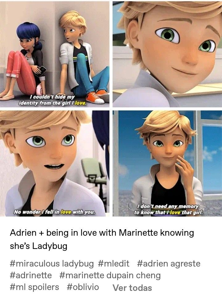 Ahhhh If Only They Remembered With Images Miraculous Ladybug