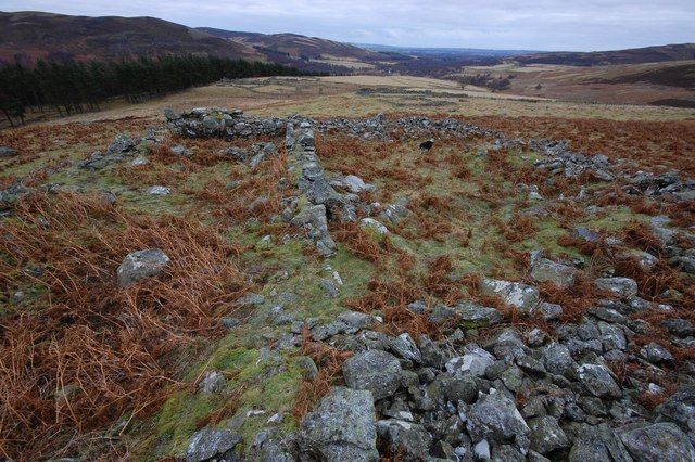 Close up of Shanno Castle (remains of) by Richard Holliday - near to Auchmull, Angus, Great Britain