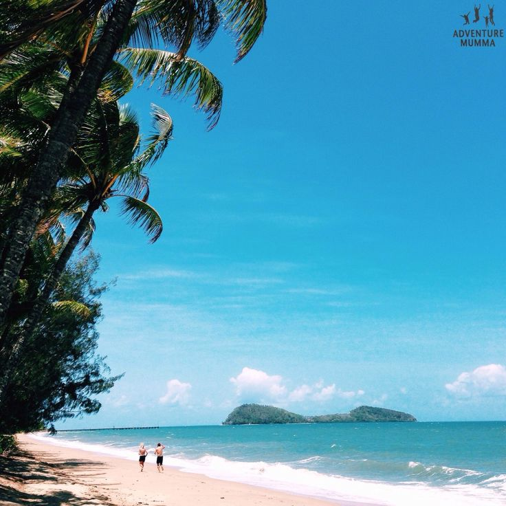 Things to do in Cairns in Winter