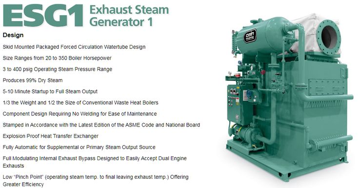 Cain Industries Esg1 Steam Generator Fuel Cost Exhausted