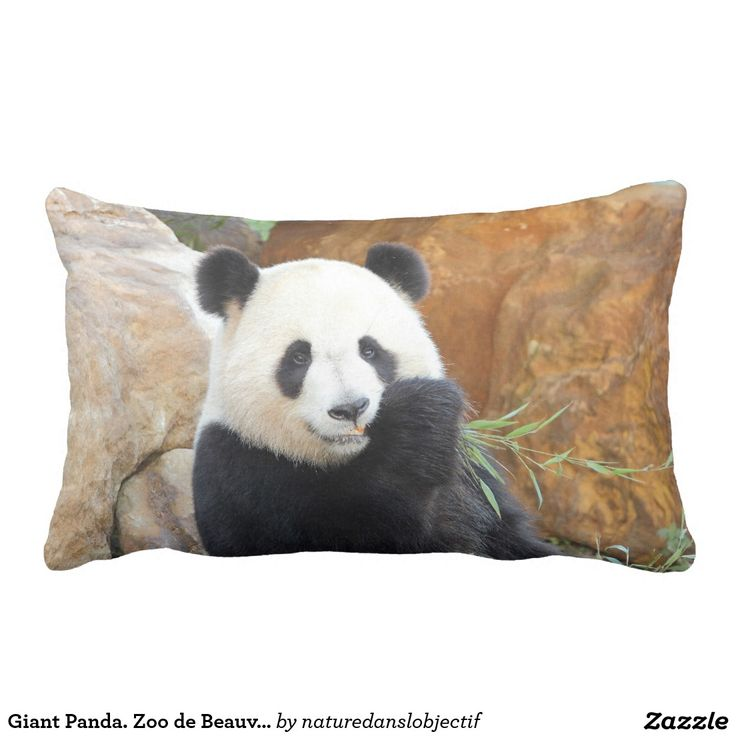 Giant Panda. Zoo de Beauval en France. Lumbar Pillow