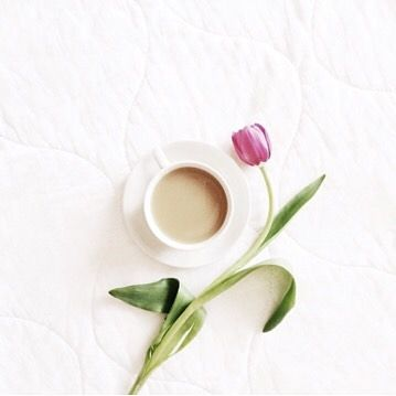 Good morning and keep in mind: Do what is right, not what is easy. Photo: @milkthistles  #goodmorning #morning #flower #pink #coffee #cup #mug #white #creation #quote #inspiration #love #amazing #right #noteasy #bonjour #bomdia #keepinmind #instamood #instalike #instadaily #tulip #rose #afewjewels #jewelry #jewel