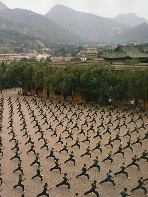 a school of martial arts AWESOME!!