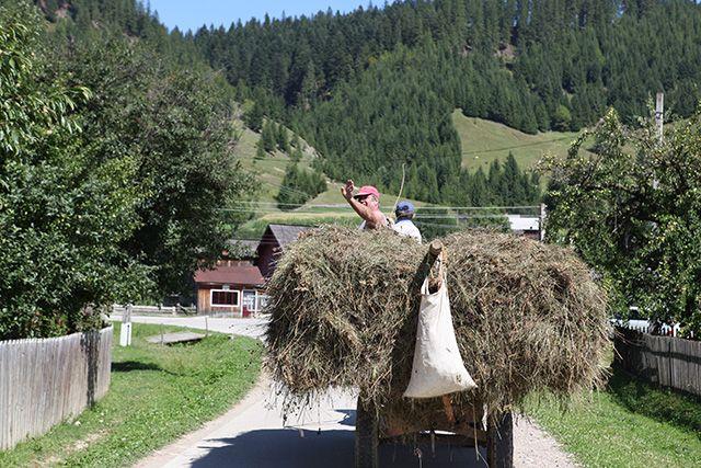 Maramures, Roumanie. http://www.lonelyplanet.fr/article/10-experiences-vivre-en-roumanie #maramures #Roumanie #voyage