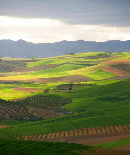 Atardecer en los campos de Alhama de Granada.