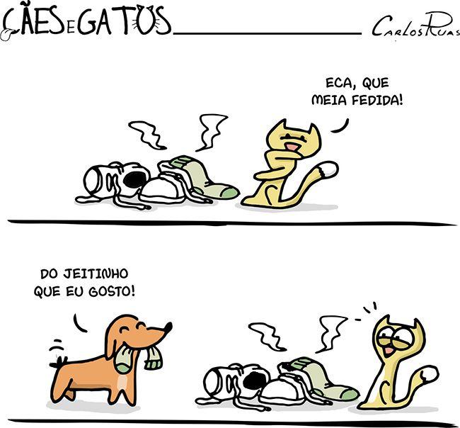 Cães e Gatos – Meias