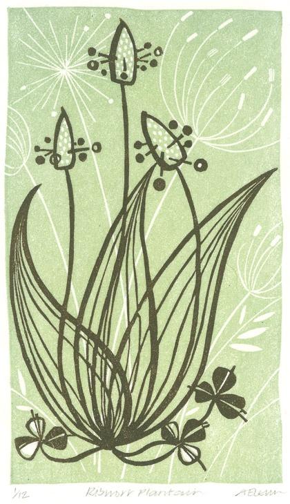Angie Lewin - Ribwort Plantain