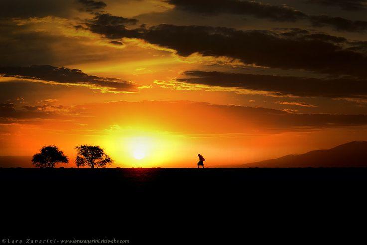 #Infrared #africa #Safari  #wild #blackandwhite #blackandwhitephotography