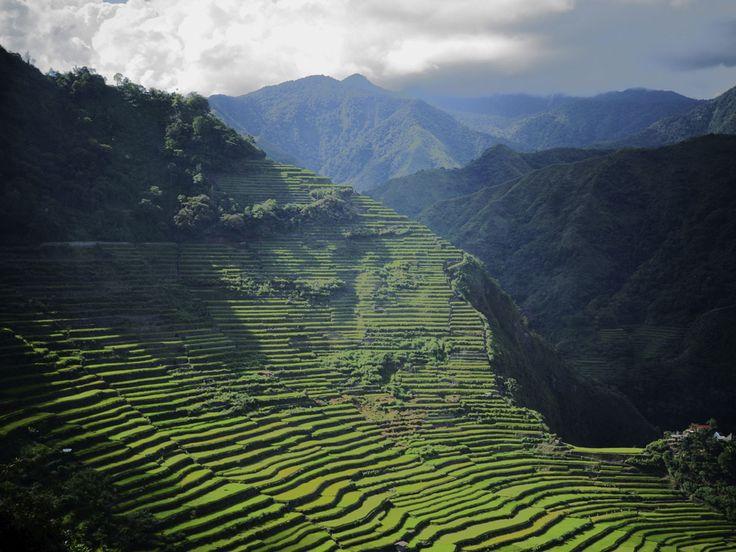 フィリピンで「天国へ昇る階段」と呼ばれる畑が美しすぎる!「コルディリェーラの棚田群」の絶景と歴史