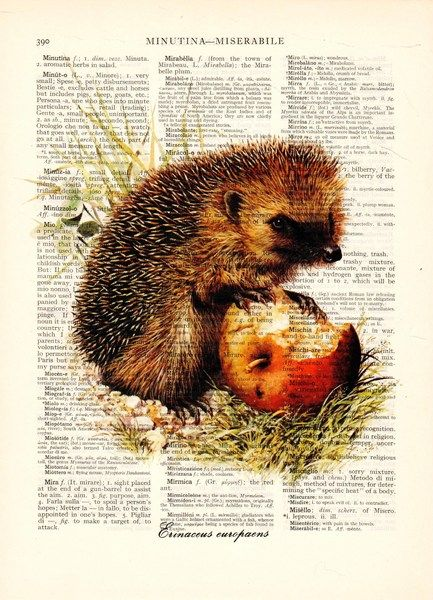 Digital printing – Hedgehog Art Illustration Dictionary book print – a unique product by Dictionary-vintage-book-page on DaWanda