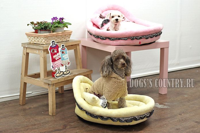 """Купить Кроватка """"Люлька"""" желтая для собак"""