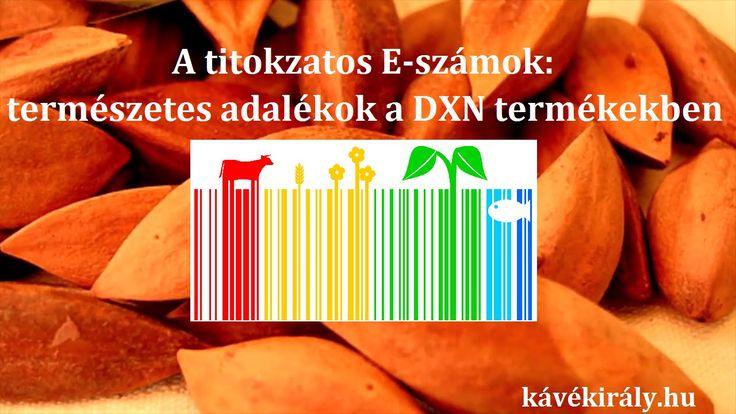 A sokat vitatott E-számok/élelmiszer-adalékanyagok a DXN termékeiben