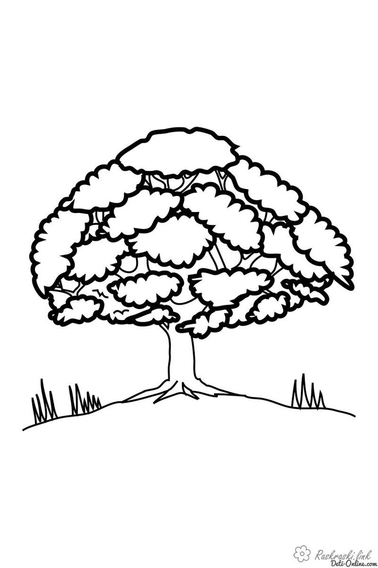 Herunterladen und ausdrucken Malvorlagen Bäume