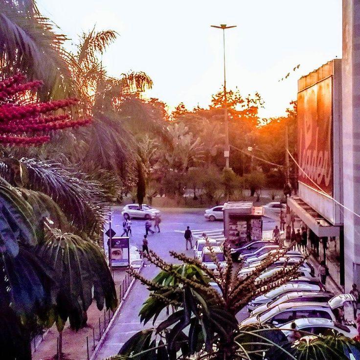 Gosto muito das luzes do fim de tarde. Ela deixa locais extremamente comuns com um quê a mais uma graça uma bossa. Imagem feita da passarela que liga o Plaza Shopping @plazaniteroi ao Via Center no Centro de Niterói na quinta-feira por volta de 16:45h.  #sunset #fimdetarde #niterói #NiteróiIgers  #plazashopping #eunasciaqui #CentrodeNiterói #NiteróiGram #comprasemniterói #shoppingcenters #facades #niteroi_como_destino #MotoG4 #mobilepictures #streetpics #sunsetlovers #MTur #vésperadeferiado…