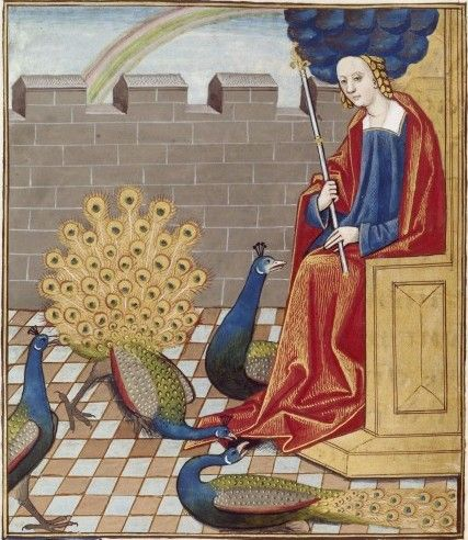 scattered images from the illuminated manuscripts of the National Library of France