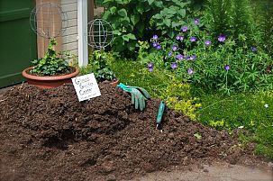 Tips for applying mulch. We will have 3 yards of mushroom compost delivered this week. When I b… :: Hometalk