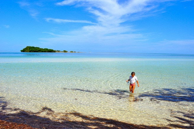 The crystal clear waters of Bahia Honda State Park are perfect for snorkeling