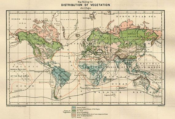 1890s Vintage World Maps Distribution of Plants by CarambasVintage