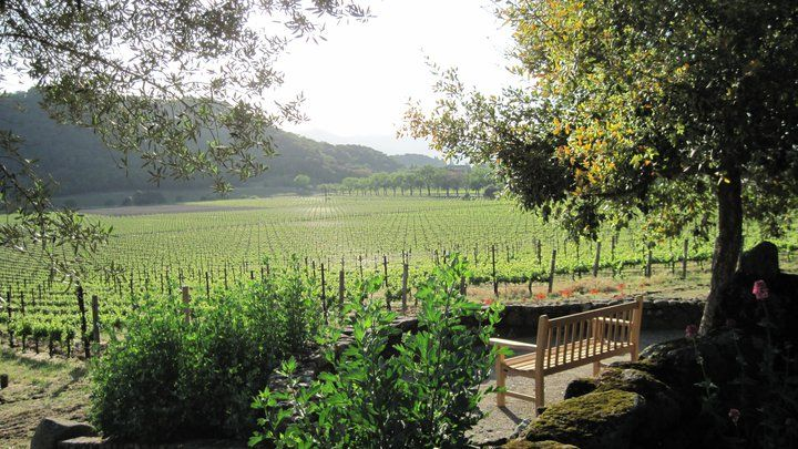 Local Wineries: Stag's Leap, Napa, California.Grapes have been grown since the 1880s at Stags' Leap, sheltered by the Stags' Leap Palisades, and adding to the beauty and the resources available to the Stags' Leap working ranch. Wine growing is the focus now, but they will be happy to talk to you about the ranch and you can arrange for a tasting tour available by appointment only.