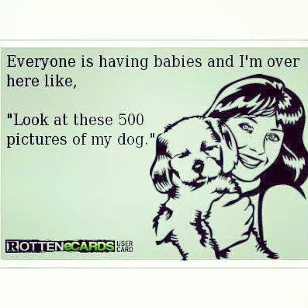 Babies and dogs quote