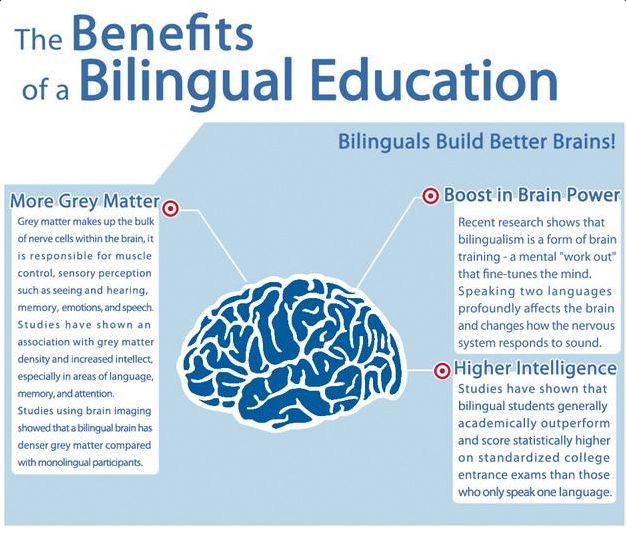 to expect the benefits of bilingual education parents should  to expect the benefits of bilingual education parents should support the habit of learning in a second language from the early childhood children s