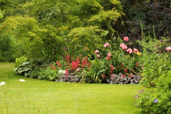 Cr er un jardin anglais sur un petit terrain parfait for Concevoir un jardin anglais