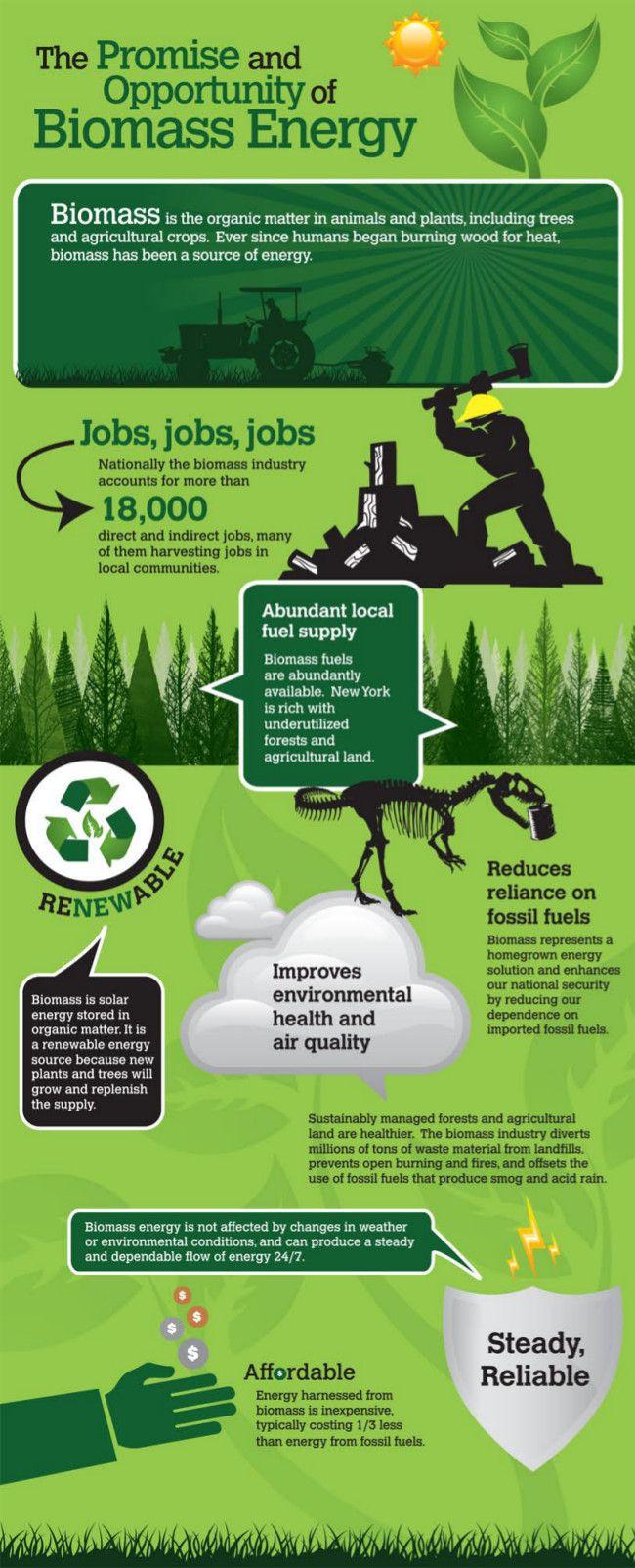 Biomass_Energy_Infographic_en.jpg (650×1604)