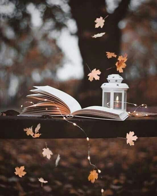 Herbst – #Herbst #samt