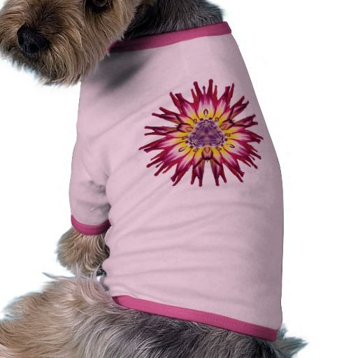 MumStar 3 Dog T Shirt