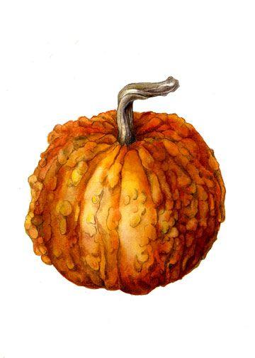 72 Best Images About Pumpkin On Pinterest