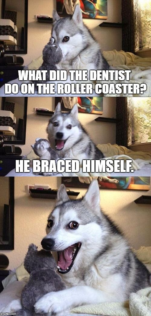 Bad Pun Dog Meme | WHAT DID THE DENTIST DO ON THE ROLLER COASTER? HE BRACED HIMSELF. | image tagged in memes,bad pun dog | made w/ Imgflip meme maker