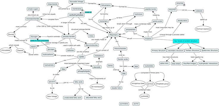bio chemistry for dummies pdf