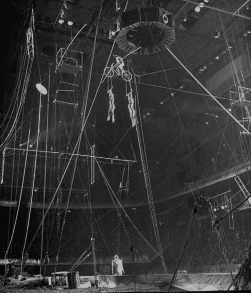 178 Best Circus Trapeze Artist Arialist Images On Pinterest Circus Circus Circus Poster And