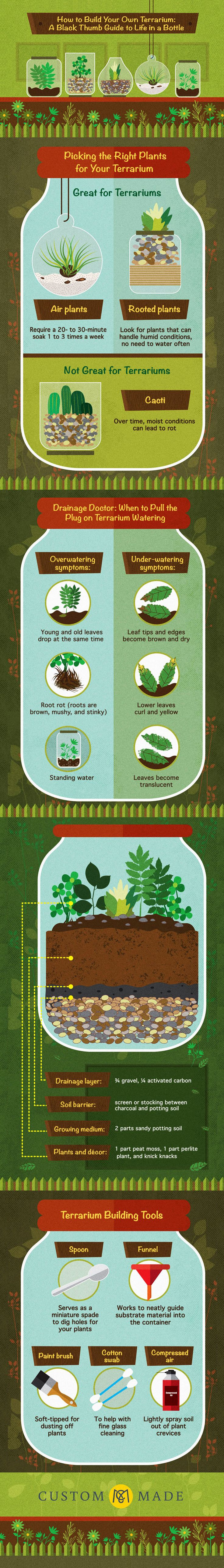 How to Make a Plant Terrarium - Gardening Infographic. Topic: planting, plants, succulents, greenhouse, glass jar, bowl, bonsai.