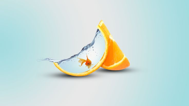 Nice Обои Gold Fish in an Orange Slice 3