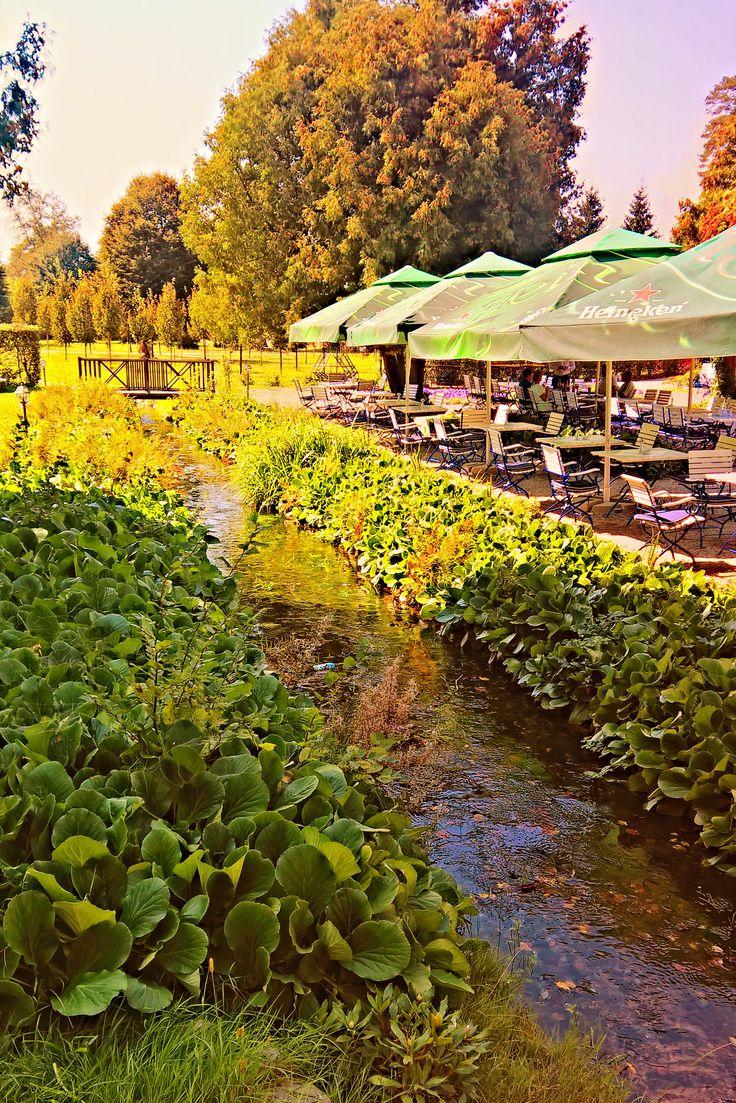 Gradinile olandeze va intampina cu flori multicolore de primavara pana toamna. #gradinadevara #brukenthal #avrig
